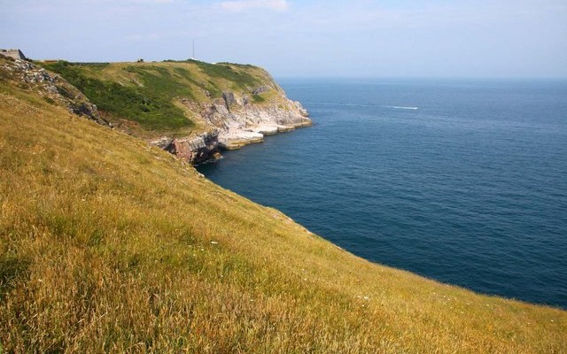 Photo of grassy fields down to coastal cliffs and the sea at Berry Head