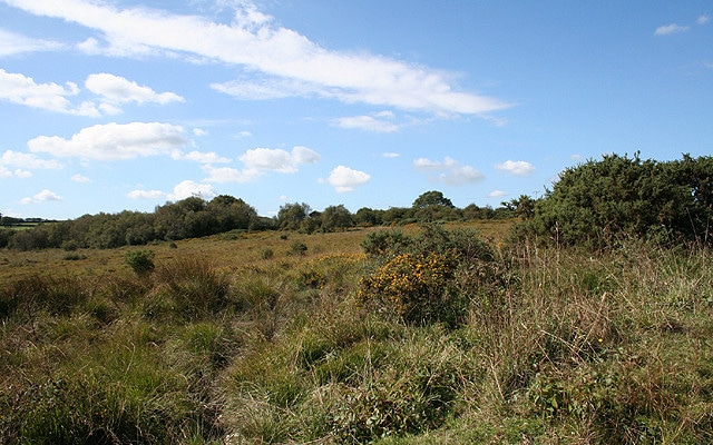 Photo of moorland at Knowstone Moor