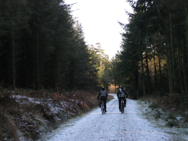 Photo of two people mountain biking along a forest track in the snow at Haldon Forest Park