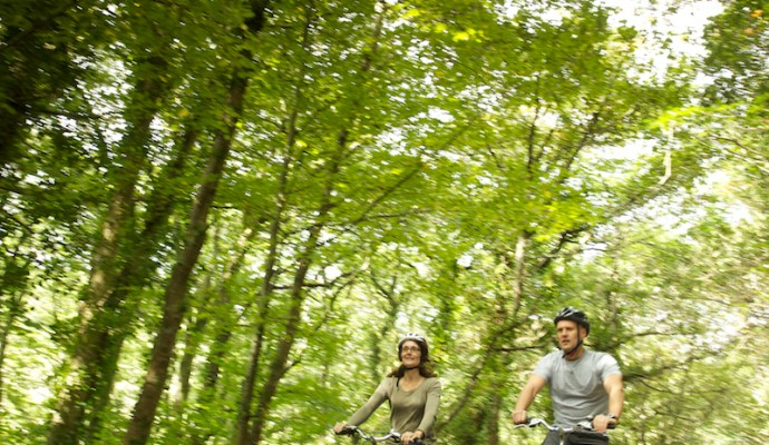 Photo of cyclists on a trail through woodlands