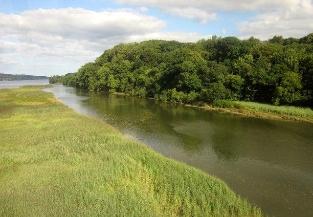 Photo of marsh alongside the river Teign
