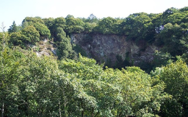 Photo of trees surrounding an old quarry at Cann