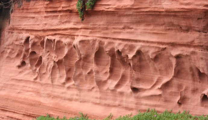 Close up photo of red sandstone cliffs at Dawlish