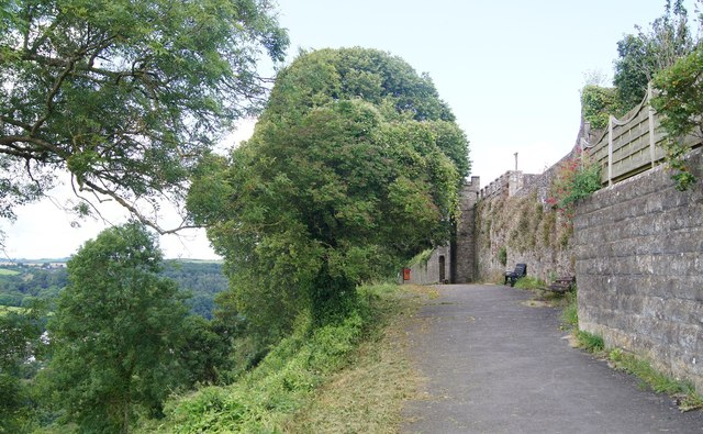 Photo of trees and wall looking towards Great Torrington