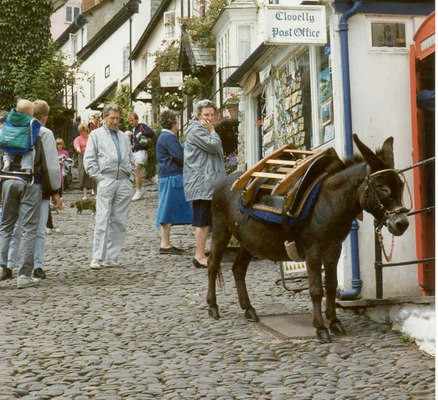 Photo of a donkey tied up outside a shop in Clovelly high street