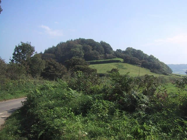 Photo of the view towards Sidbury Castle of fields and woodlands on a hill