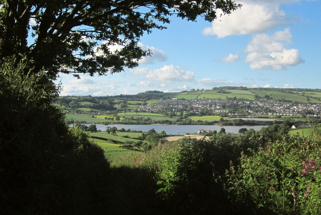 Photo of the Teign estuary taken through trees