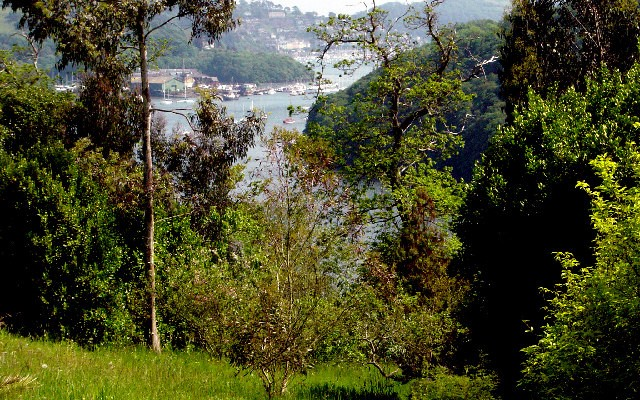 Photo looking down to the Dart estuary with Dartmouth in the background, from Greenway House gardens