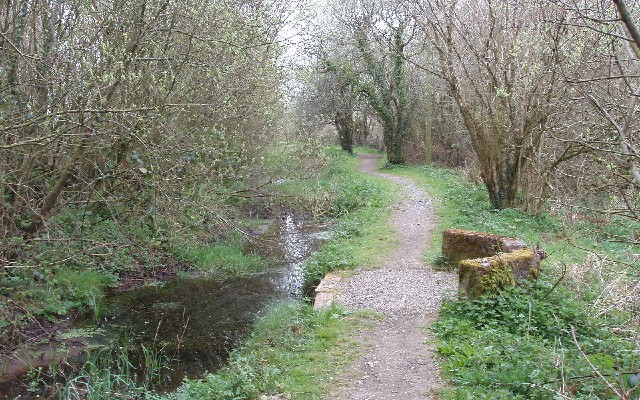 Photo of a section of Bude canal lined with trees