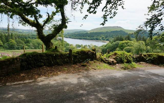 Photo of a view across a country lane to Burrator Reservoir in the distance
