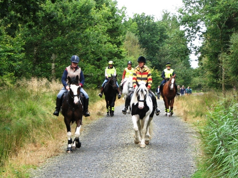 Photo of a group of horse riders on a multi use trail at Cookworthy Forest