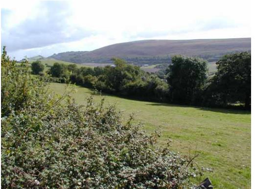 Photo of fields, woods and hills at Codden Hill near Barnstaple