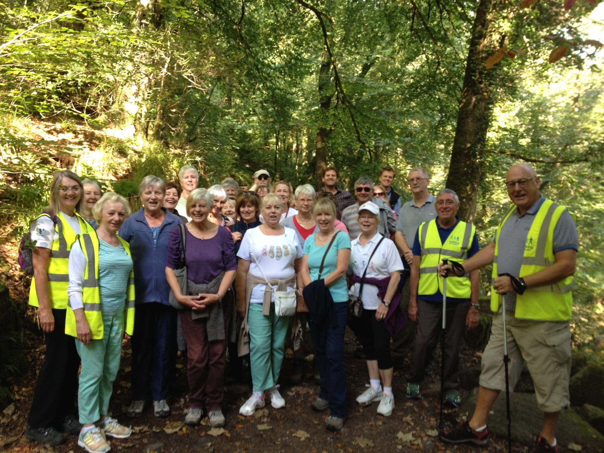 Photo of walkers in a forest as part of the Connecting Actively to Nature programme
