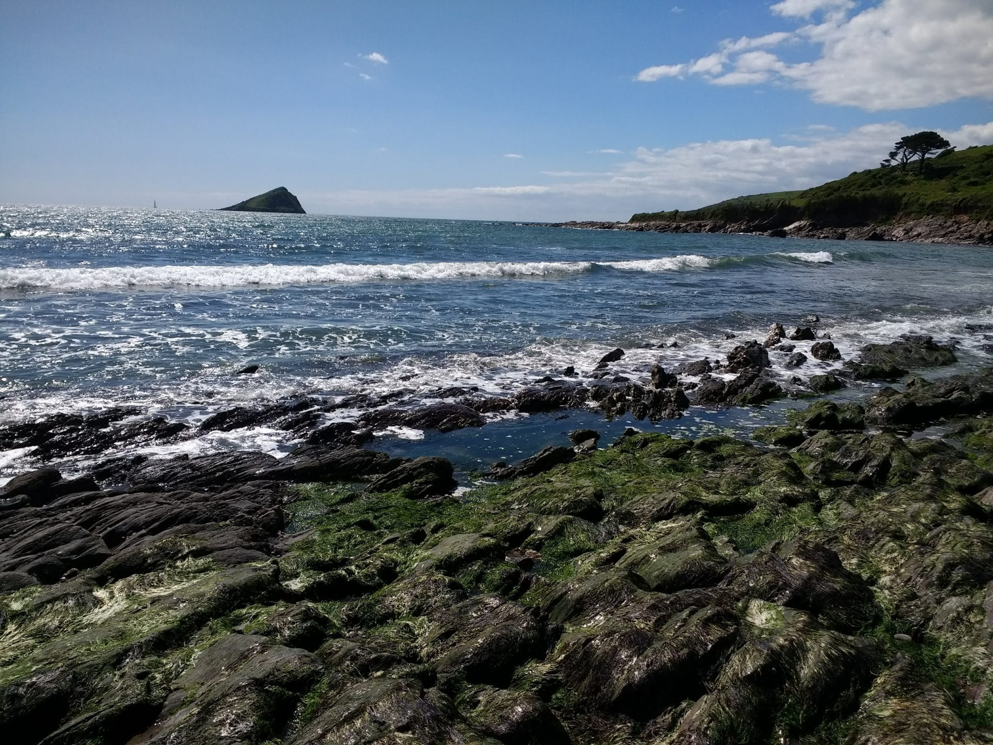 Photo of the Mewstone from Wembury beach in May
