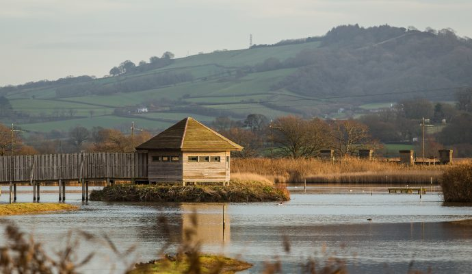 Photo of the bird hide at Seaton Wetlands