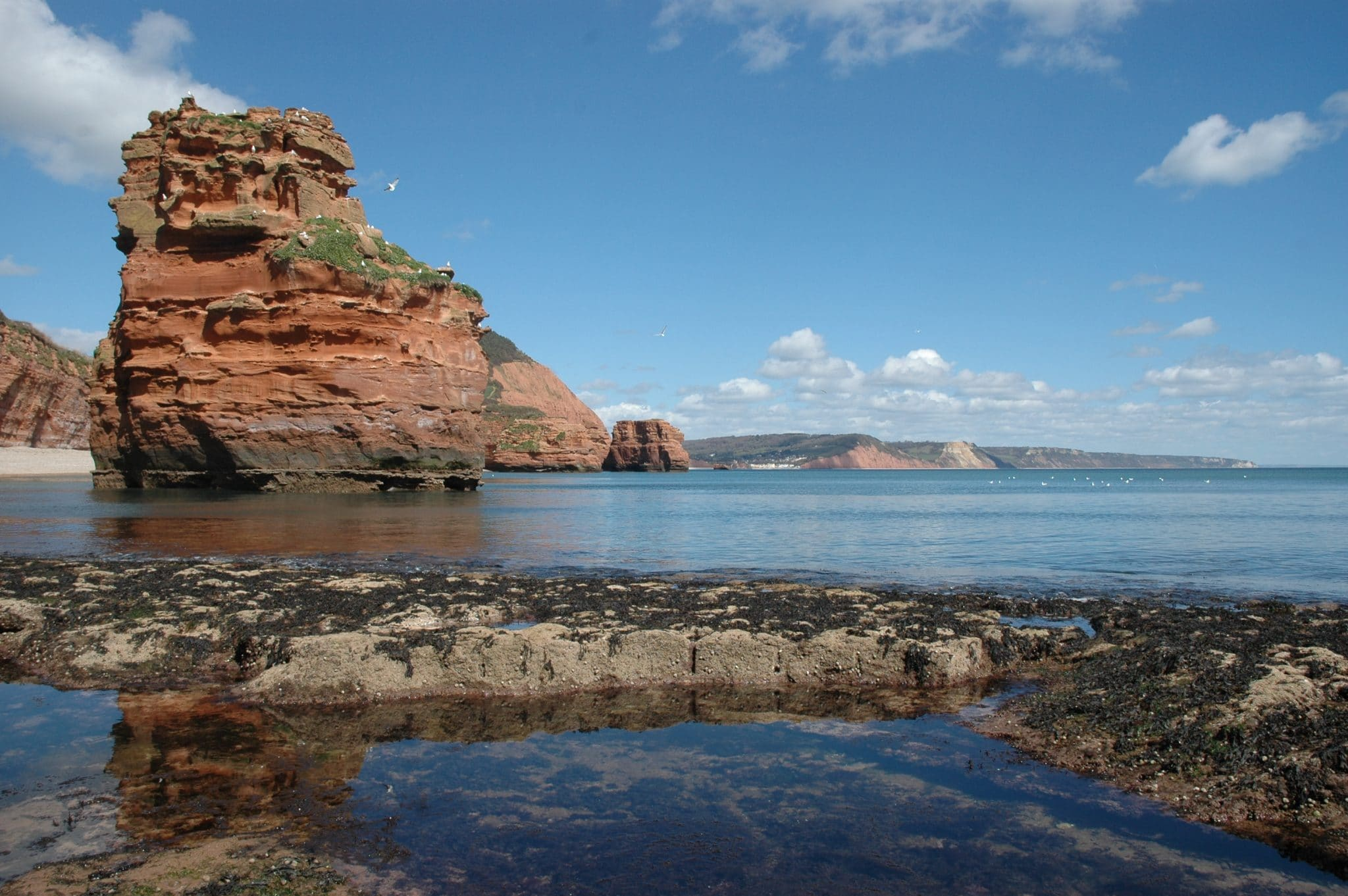 Landscape photo of the East Devon Coast at Ladram Bay