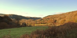 View up the Wray Valley to Lustleigh from the Wray Valley Trail