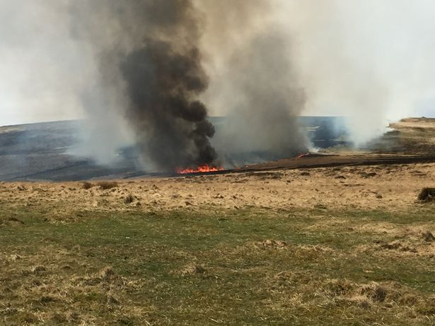 Photo of a wildfire in Devon